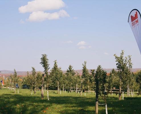 Panorama sur le verger du Domaine ValBrome
