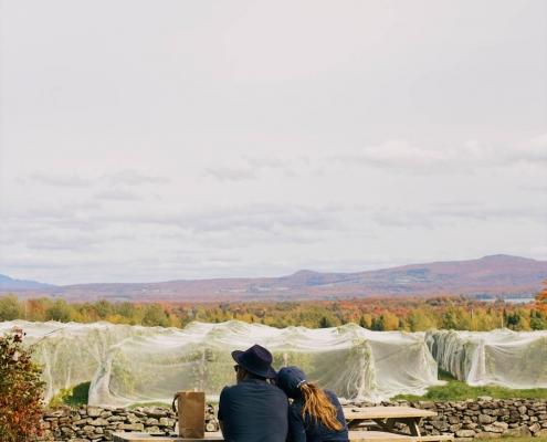 Couple installé à une table de pique-nique, contemplant les vignes